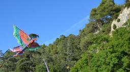 Robion fête ARCL cerf volant 3