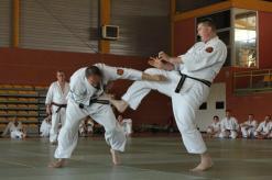 self defense, Arts martiaux à robion
