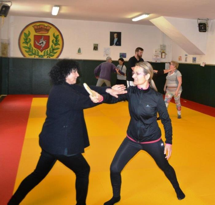 robion self defense (1)