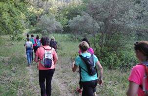 marche active à robion, Luberon, activité sportive (2)