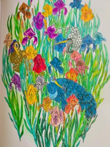 colorier pour se sentir mieux